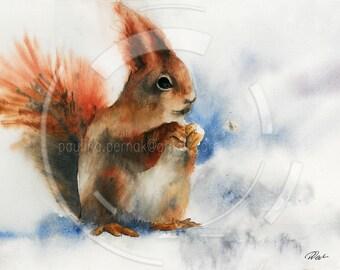 watercolor squirrel