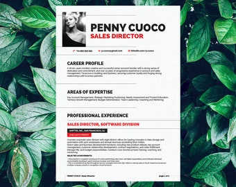 Savage Resume Template Auriage