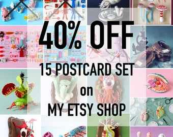 SALE! 40% OFF! - 15 Postcard Set: Hiné's Felt Sculpture collection - squid octopus photograph toy craft art HineMizushima animal insect bug