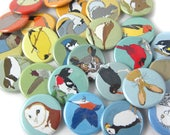 Wild Bird + Animal Pins | Choose from 63 Designs! | Perfect Party Favors| nature gift wildlife outdoors songbird original illustrations