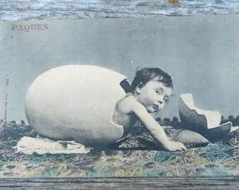 Vintage 1900s  French postcard  baby inside egg
