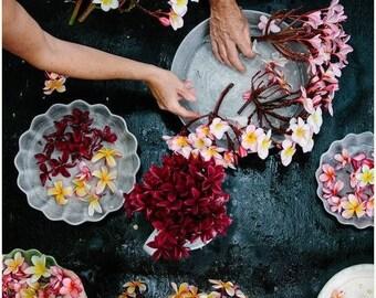 SALE Frangipani Perfume, Scent Fragrance, Tropical, Coconut, Madagascar Vanilla, Scented, Vegan Cruelty Free, Tropical Vacation