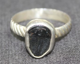 Trilobite Sterling Silver Ring, Fossil Silver Ring, Trilobite Fossil Ring