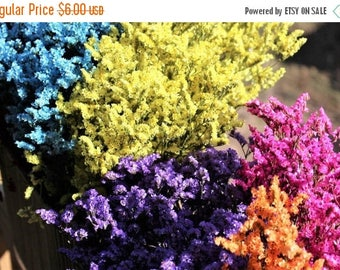 Save 15% Sinensis bunches in 10 assorted colors-Dried floral bunches-Tiny flowers
