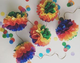 CLASSIC RAINBOW Pom Pom Garland kit / tissue paper garland / nursery decoration / first birthday paty / baby shower decor / candy bar buffet