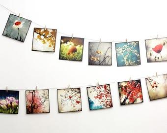 Set of 12 art postcards - set Nature 03