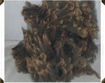 Hampshire cross Wool! (brown)