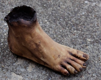 Severed Human Zombie Foot - Male Right - SCAB1093 - Evil Dead / Texas Chainsaw Massacre / Night of the Living Dead / Zombie Corpse Prop