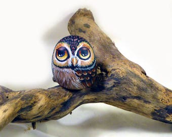 Little owl hand painted on a stone