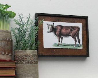 "home decor - ""Brown Cow""- kitchen farmhouse - wall art"