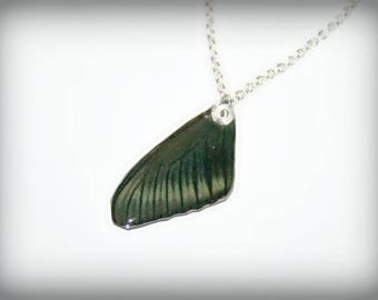 Real Butterfly wing, pendant with chain plated Silver (2)