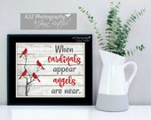 When cardinals appear, angels are near photography print