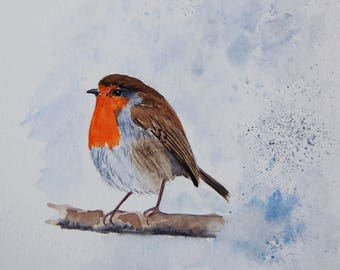 rouge gorge, oiseaux, nature,jardin, aquarelle,art animalier