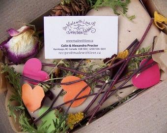 Gourmet Goodies - Artisan Food Gift Box - Organic Magic Meals & Spice Blends - Green Wedding Gift Box - Birthday Gift Set The Edible Rainbow