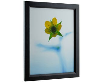 "Craig Frames, 19x25 Inch Black Picture Frame, Economy 1"" Wide (7171610BK1925)"