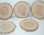 "Birch Wood Slice with Bark 9"" to 10"" diameter x 1"" thick.  Set of Five"
