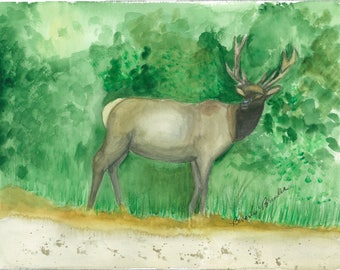 Elk Watercolor Painting, Elk Watercolor Painting Print, Elk Watercolor print, elk painting