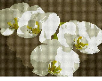 Needlepoint Kit or Canvas: White Orchids