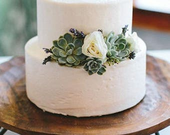 3 Succulent cuttings for cake