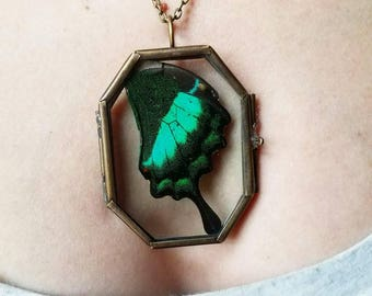 FREE SHIPPING! Real Emerald Green Butterfly Wing in Glass Locket Necklace