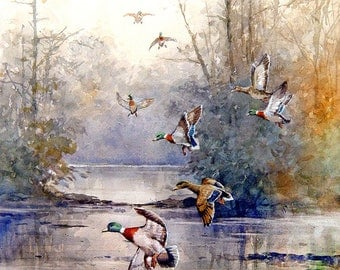 Ducks Art Print of watercolor painting - Forest Wildlife, Trees, Lake, Nature