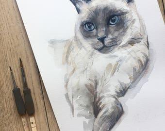 pet portrait, watercolor, painting, CUSTOM CAT PAINTING, Custom cat portrait, siamese cat, custom pet painting, pet portrait, Ninja Heevel