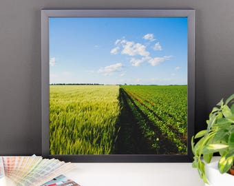 Framed photo paper poster - Red Silo Original Art - Green Wheat & Beans