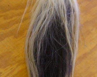 White/Black Horse Tail