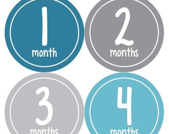 Monthly Baby Milestone Stickers Baby Boy Baby Shower Gift One-Piece Baby Stickers Monthly Baby Stickers Baby Month Sticker 308