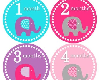 Monthly Baby Stickers Baby Month Stickers Baby Girl Month Stickers Monthly Photo Stickers Monthly Milestone Stickers 085