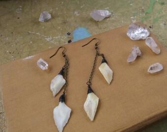 Gar Fish Scale Earrings - real bone jewelry