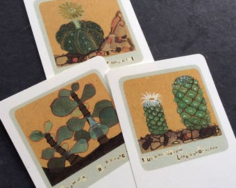 6 ART CARDS - SUCCULENTS, Cactus