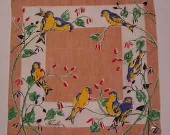 Vintage Finch Bird Hankie