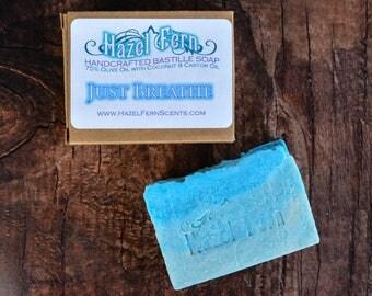 Eucalyptus Soap Bar - Blue Soap Bar - Large Guest Soaps - Gift for Boyfriend - Artisan Soap - Vegan Handcrafted Soap - Palm Free