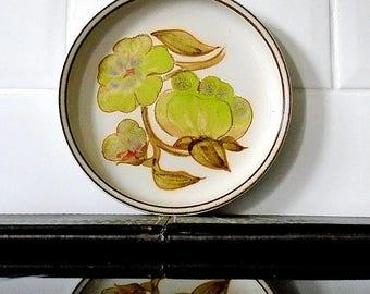 Vintage Denby Troubadour Tea / Side Plate 1970's