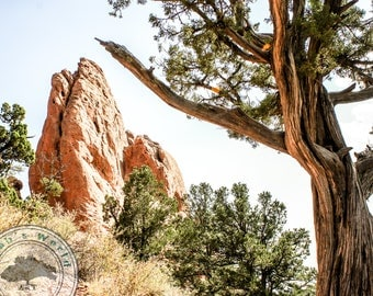 Landscape Photography | Garden of the Gods | Digital Download