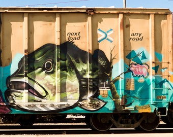 Fish: Train are, graffiti. Frame not included. Individually photographed and printed by Frank Heflin