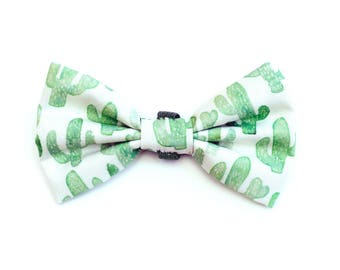 The Desmond Bow Tie — Dog Bowtie, Made in Brooklyn, Bowtied, Rainbow, Cactus, Succulent, Wedding Clothes, Ring Bearer, Collar, Outfit
