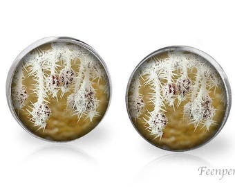 Stud Earrings Frosted 15