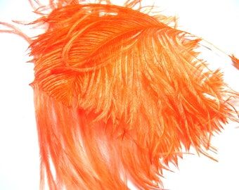 STRANDS OF FEATHER DOWN 40 D OSTRICH ORANGE BRIGHT 8/10 CM