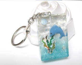 the Sea World and its dolphins key holder