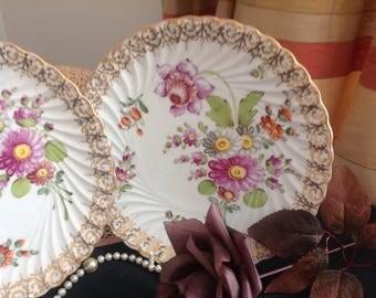 Pair of German porcelain Dresden plates.