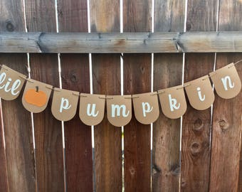 Lil Pumpkin Banner / Pumpkin Babyshower / Pumpkin Party / Lil Pumpkin Party / Pumpkin Banner