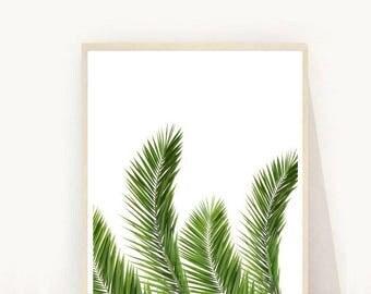 Palm Print, Palm Leaf, Palm Leaf Print, Tropical Leaf, Scandinavian Print, Printable Art,  Instant Download, Wall Decor