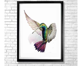 BIRD OR BUTTERFLY - Colorful Hummingbird Watercolor Art Print Poster Bird Animal Illustration Purple Pink Gray White Wall Decor
