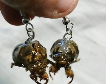 OOAK Resin Cicada earrings