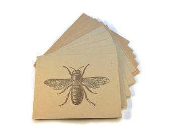 Blank Note Cards, Bee, Blank Notes, Stationery Set, Nature Theme Note Cards, Insect Cards,  Quirky Note Cards,  Rustic Note Cards, Notecards