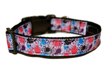 Splash of Color Dog Collar, Paint Dog Collar, Girl Dog Collar, Pink Girl Dog Collar, Blue Dog Collar, Boy Dog Collar