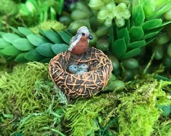 Miniature Bird on Nest with Eggs