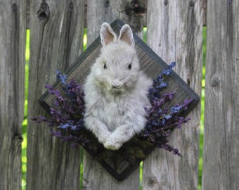 Mounted Rabbit Taxidermy with Faux Flowers